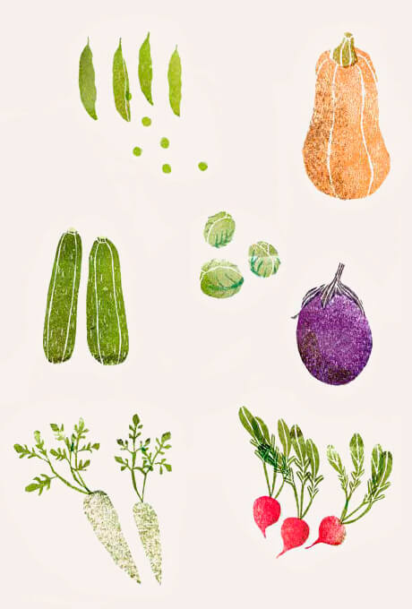Inspiration of illustrated vegetables
